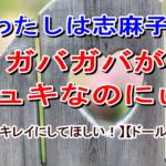 志麻子「わたしは志麻子のガバガバがシュキなのにぃ!」