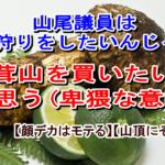 志麻子「山尾議員は松茸狩りをしたいんじゃなく 松茸山を買いたいんだと思う(卑猥な意味で)」